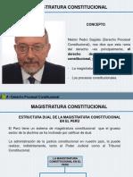 MAGISTRATURA CONSTITUCIONAL