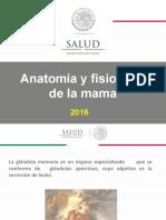 5.-Anatomia y Fisiología de La Mama Sonora