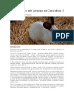 Enfermedades Más Comunes en Cunicultura_parte I