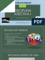 Disciplina Afectiva i