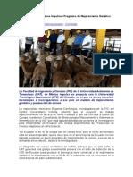 Especialistas Mexicanos Impulsan Programa de Mejoramiento Genético Ovino en Ecuador