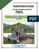 PERFIL TROCHA CARROZABLE.pdf