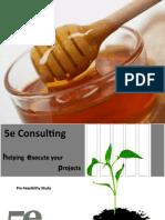 5e Consulting Pre Feasibility Study for Honey Park