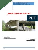 Infiltratii poduri