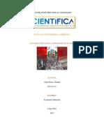 Analisis Critico Economia Ambiental