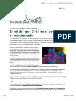 El rol del gen Sirti en el proceso de envejecimiento