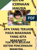 PRESENTASI-SISTEM-PENCERNAAN-MANUSIA(1).ppt
