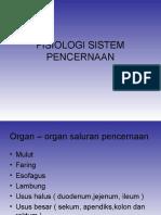 1.-Fisiologi-Sistem-Pencernaan.ppt