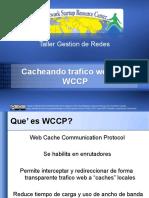 wccp-verES.pdf