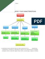 Tipos de Parrafos y Sus Caracteristicas