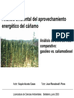 Analisis energetico cannabis.pdf