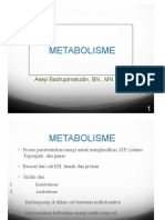Metabolisme Karbohidrat Lemak Dan Protein Abj 17.Pptx