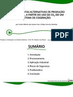 ESTUDO DE ROTAS ALTERNATIVAS DE PRODUÇÃO DO METANOL, A PARTIR DO USO DE CO2 EM UM SISTEMA DE COGERAÇÃO