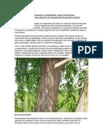 Trabalho PDF