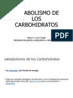 CLASE III Metabolismo de Los Carbohidratos