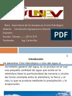 Intr. Agrp Dominicana