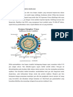 Morfologi Virus Herpes Simpleks