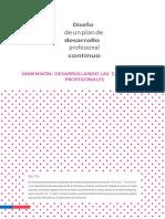 Diseño de Un Plan de Desarrollo Profesional