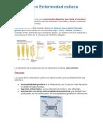 Resumen enfermedad celiaca