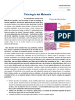 Clase10_Músculo_Fisio1