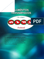 Animals Transgenicos
