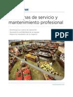 Prof Service Maintenance