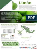 Infografía del Limón