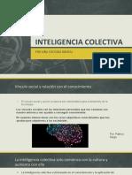 Inteligencia Colectiva - IA (1)
