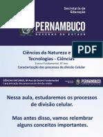 Caracterização Dos Processos de Divisão Celular