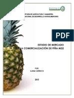 Estudio-de-Mercado-para-la-comercializacion-de-pina-MD2.pdf