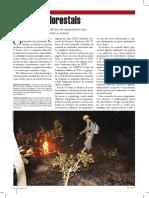 Artigo-Incendios-Florestais