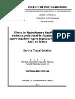 $R5IRS75.pdf
