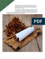el tabaco.docx