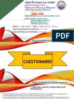 QUIMICA ORGANICA II - INFORME N°12 - AMIDA - UREA
