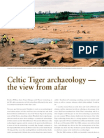 Celtic Tiger Archaeology - the view from afar