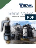 VSGR - Final 2017