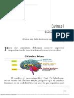 Neurociencias y Neuroaprendizajes Las Emociones y El Aprendizaje Nivelar Estados Emocionales y Crear Un Aula Con Cerebro(2)