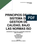 Principios de Un Sistema de Gestion de Calidad, Bajo Las Normas ISO