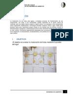 MADURACION-DE-ALIMENTOS (1).docx
