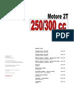 2011 - Motore 2T 250.300cc V1.0.pdf