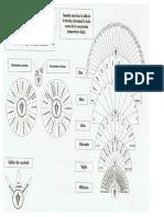 Tablas-Radiestesia.pdf