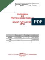 96967235-Programa-Prevencion-de-riesgos.pdf