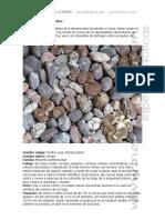 Manual_Cultivo_Crasas_Lithops_neocultivos.pdf