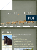 Tugas 2 Evolusi Kuda