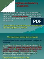 07pararumiinematodos-091018182012-phpapp02.pdf