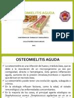 Diapos de Artritis Septica Terminada