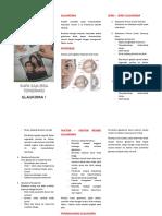 247104003 Leaflet Glaukoma
