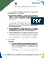 Términos y Condiciones de Uso del Campus Virtual.pdf