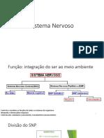 1- Sistema Nervoso