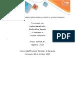 100408_29_Fase 2_Trabajo-ALGEBRA LINEAL.docx